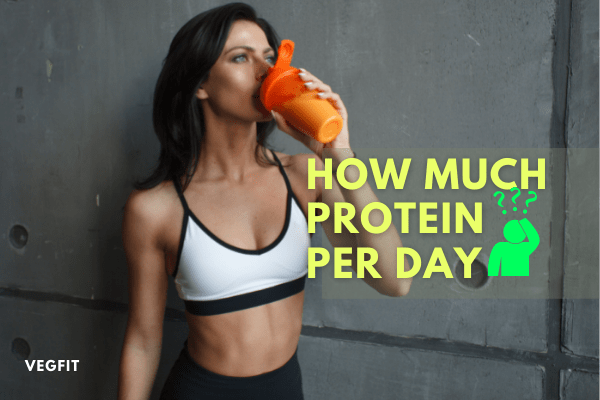 How much protein required per day_VegFit